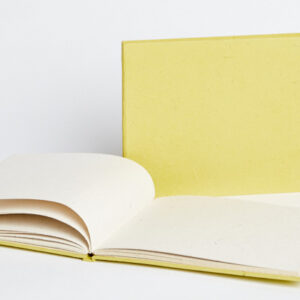 Maximus Lime Tied Journal